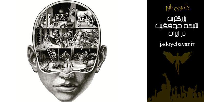 Animals inside the human brain